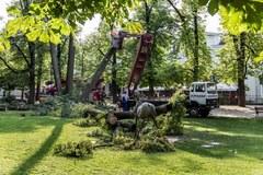 Tragiczny wypadek w Szczawnie Zdroju