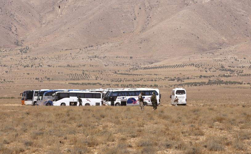 Transport bojowników Państwa Islamskiego /LOUAI BESHARA /AFP