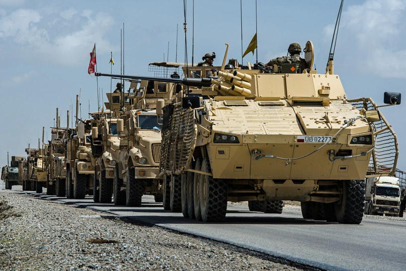 Transportery opancerzone Rosomak (na czole kolumny) w Afganistanie wykazały swoją dużą skuteczność. Dziś te wozy ulegają procesowi technologicznego starzenia... /Adam Roik/Combat Camera DOSZ /materiały prasowe