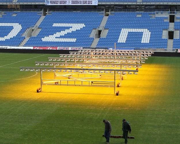 Trawa na stadionie w Poznaniu była wczoraj doświetlana, ma bowiem wytrzymać do grudnia/fot. A. Grupa /INTERIA.PL