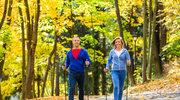Trening nordic walking w czterech krokach