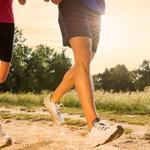 Treningi online - lekcje wychowania fizycznego XXI wieku