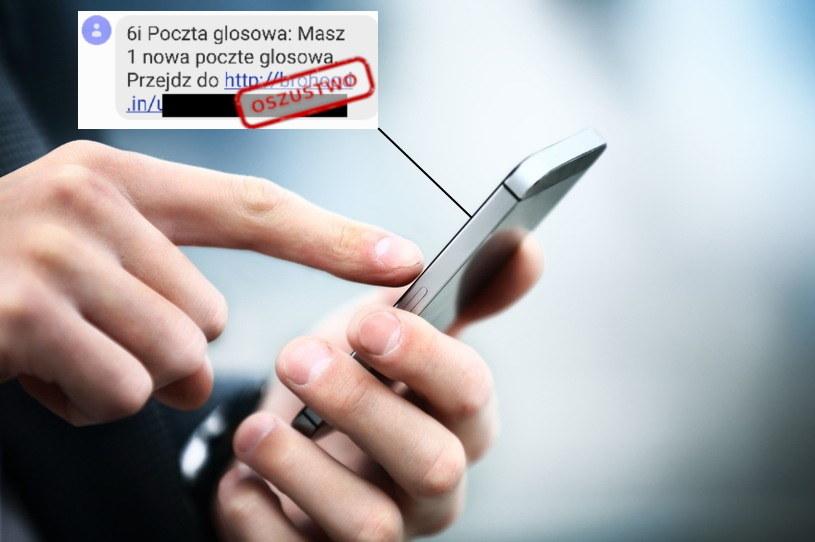Treść niebezpiecznej wiadomości tekstowej (zrzut udostępniony przez CERT Polska) /123RF/PICSEL