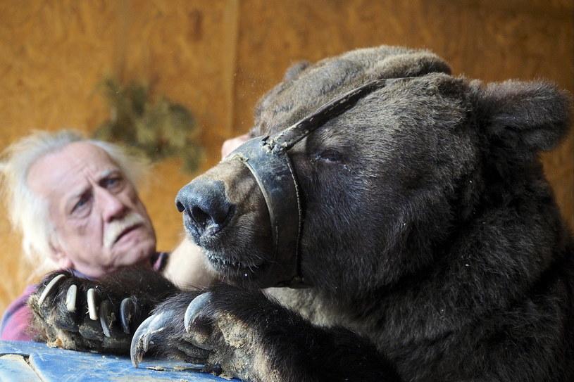 Tresura to zmuszanie zwierząt do zachowań niezgodnych z ich naturą /Dmitry Rogulin\TASS via Getty Images /Getty Images