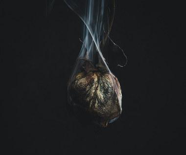 "Trivium ""What the Dead Man Say"": Spuszczony łomot [RECENZJA]"