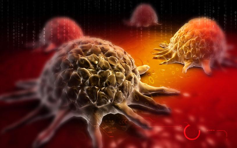 Trójwymiarowa wizualizacja komórek raka /123RF/PICSEL