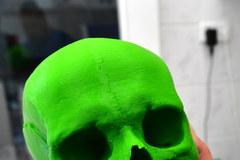 """Trójwymiarowy model czaszki """"czarownicy"""""""