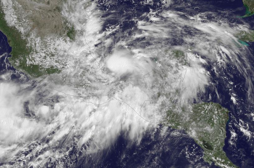 Tropikalny sztorm Ingrid przekształcił się w huragan. /AFP
