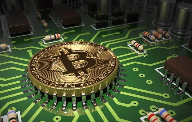 Trudne czasy przed bitcoinem. Cena spadnie o kilka tys. dolarów? /©123RF/PICSEL