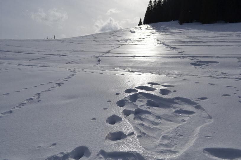 Trudne warunki na szlakach wymagają od turystów odpowiedniego wyposażenia /East News