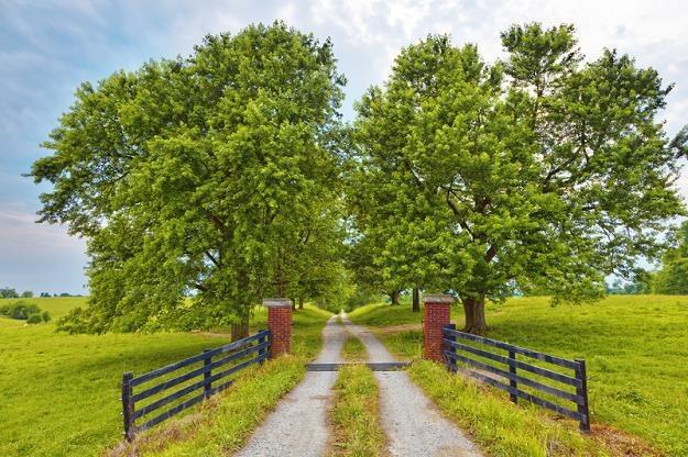 Trudno kupić ziemię według nowych przepisów /© Panthermedia