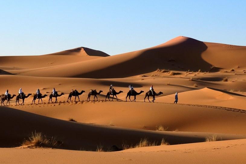 Trudno nam dzisiaj kojarzyć Saharę z jeziorem /123RF/PICSEL