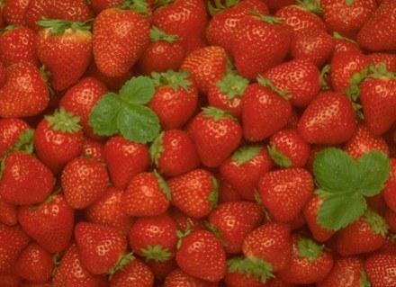 Truskawki są polecane w diecie czerwonej