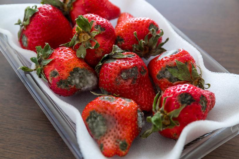 Truskawki to jedne z owoców, które najbardziej narażone są na szybkie zepsucie /123RF/PICSEL