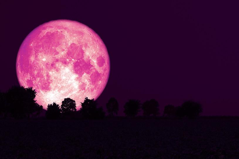 Truskawkowy Księżyc /123RF/PICSEL