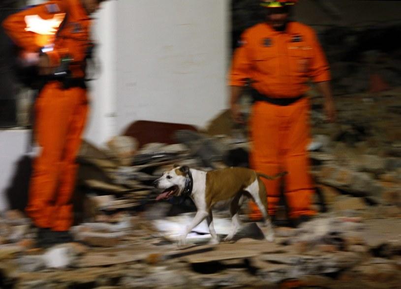 Trwa akcja ratunkowa po trzęsieniu ziemi /Narendra Shrestha /PAP/EPA
