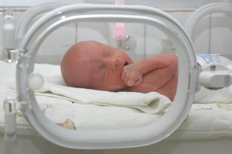 Trwa kontrola wszystkich oddziałów położniczo-ginekologicznych i neonatologicznych w Polsce. /Wociech Kotan /Reporter