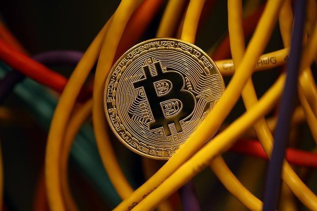 Trwa polowanie na oszczędności w bitcoinach /Getty Images/Flash Press Media