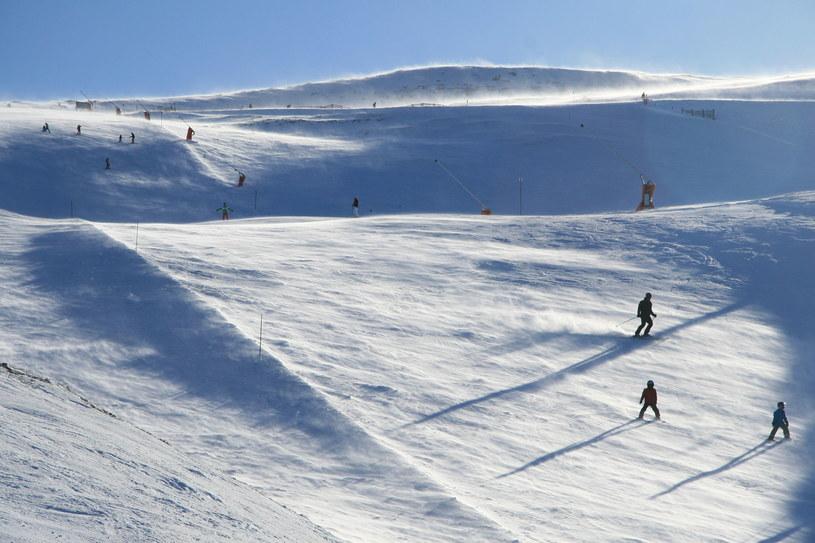 Trysil w Norwegii /123RF/PICSEL