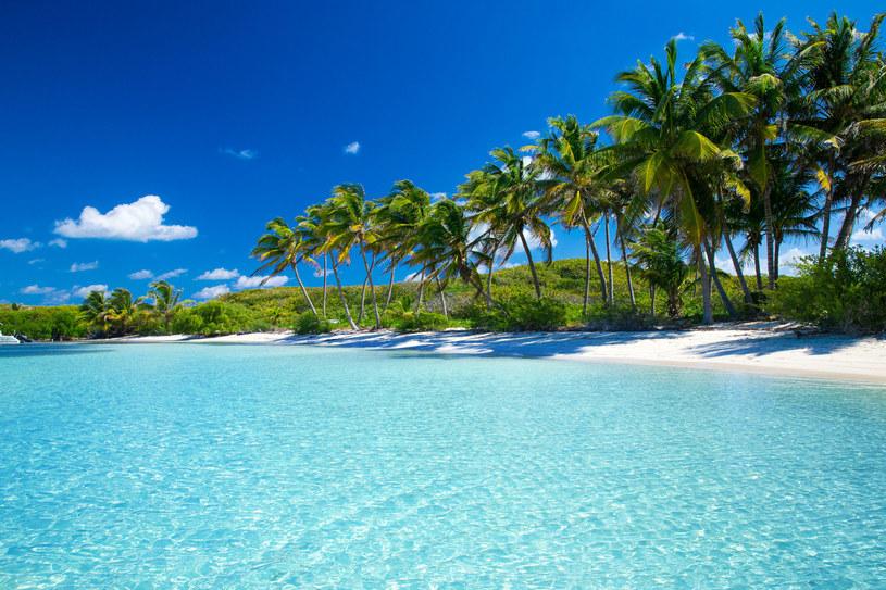 Trzeba uważać, by nie wybrać się na rajską plażę z bankrutem /123RF/PICSEL