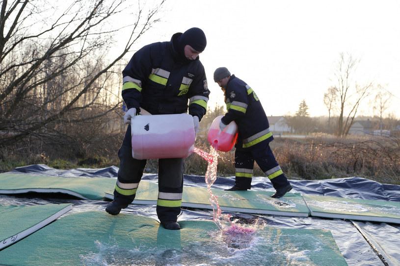 Trzecie ognisko ptasiej grypy w Wielkopolsce /Jacek Bodzak  /Reporter