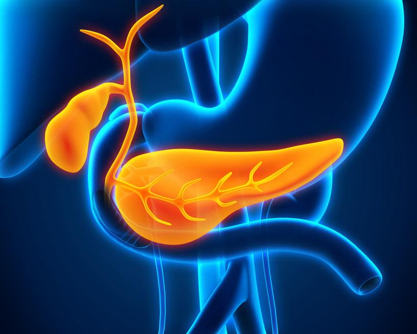 Trzustka z wielu powodów jest ważnym dla funkcjonowania organizmu organem /123RF/PICSEL