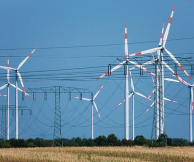 Trzy rekordy w Święta. Wiatraki dostarczyły 40 proc. prądu w Polsce