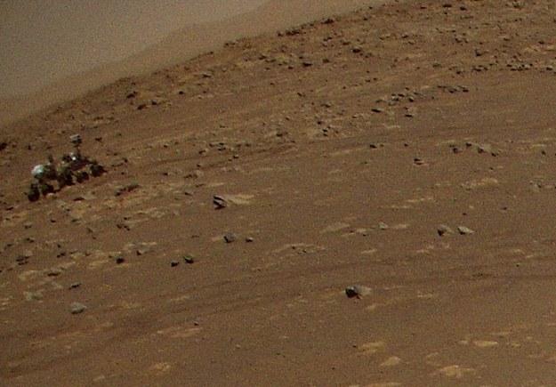 Tu jestem! ;) /NASA/JPL-Caltech /Materiały prasowe