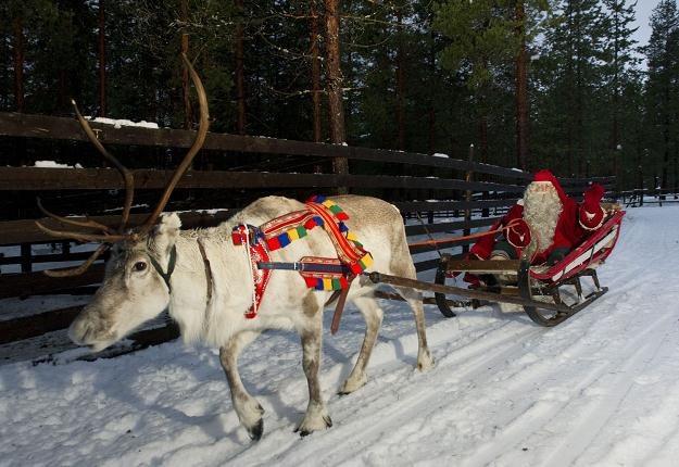 Tu Mikołaj wylądował. Ale to Finlandia... /AFP