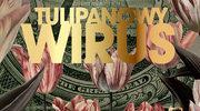 Tulipanowy wirus