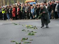 Tulipany na trasie wtorkowego konduktu, fot.Katarzyna Mala  /East News