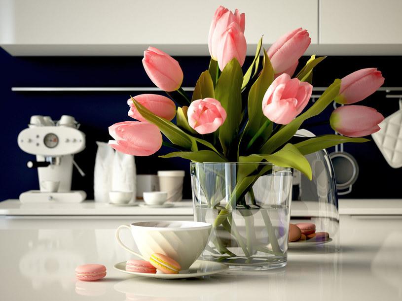Tulipany wymagają łagodnej i konsekwentnej pielęgnacji /123RF/PICSEL