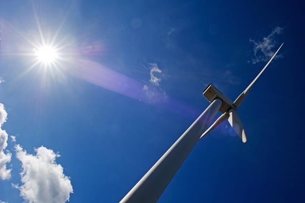 Turbina wiatrowa w Kleinpelsen, wschodnie Niemcy /AFP
