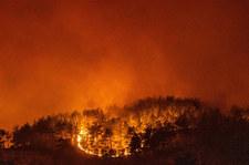 """Turcja: Polscy strażacy dogaszają ogień. """"Czekamy na ewentualne nowe zadania"""""""