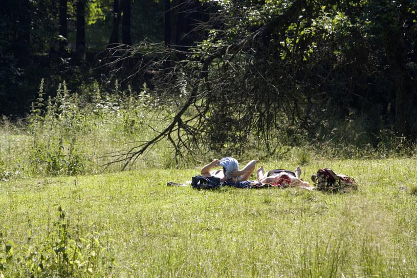 Turyści na całego korzystają z uroków polskich gór w sezonie urlopowym /Karol Serewis/East News /East News