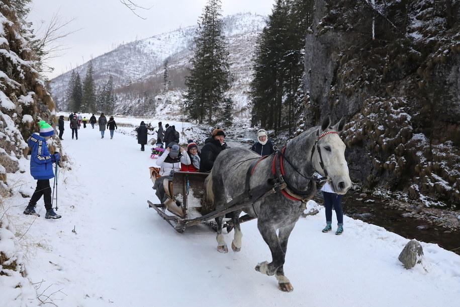Turyści w Dolinie Kościeliskiej w Tatrach /Grzegorz Momot /PAP
