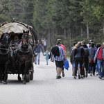 Turyści z małpą weszli na szlak do Morskiego Oka