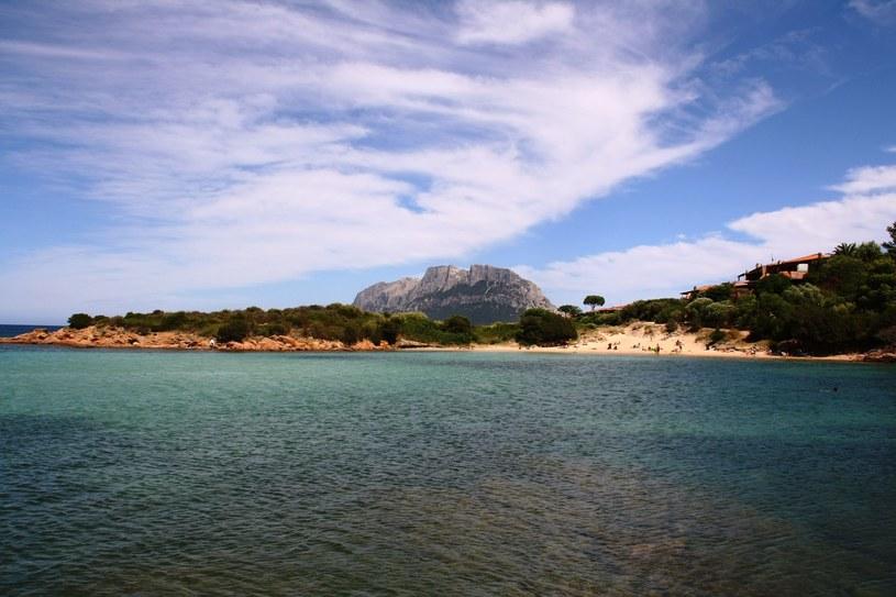 Turyści zabierają z plaż Sardyni piasek i muszelki /123RF/PICSEL