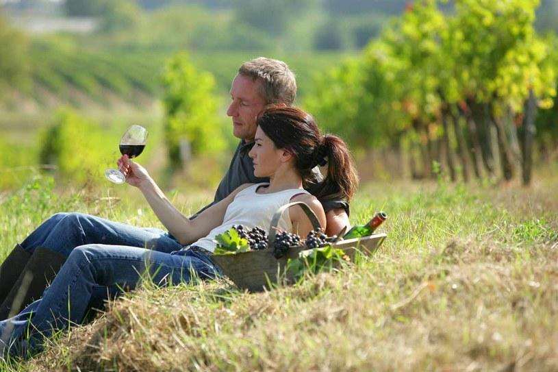 Turystyka winiarska jest coraz bardziej popularna /123RF/PICSEL