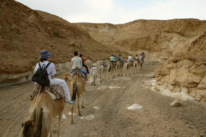 Tuż za wąskim pasem piaszczystej plaży zaczyna się surowa, kamienista pustynia. Takie jest płd.-zach. wybrzeże Morza Czerwonego /123RF/PICSEL