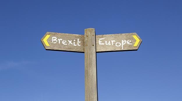 Twardy brexit przyniesie gospodarcze problemy /©123RF/PICSEL