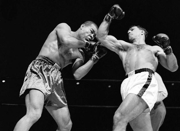 Twierdzenie o brutalnym obliczu boksu nie jest bynajmniej przesadne /Discovery World