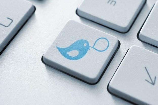 Twitter kontynuuje swoją nienachalną politykę reklamową /123RF/PICSEL