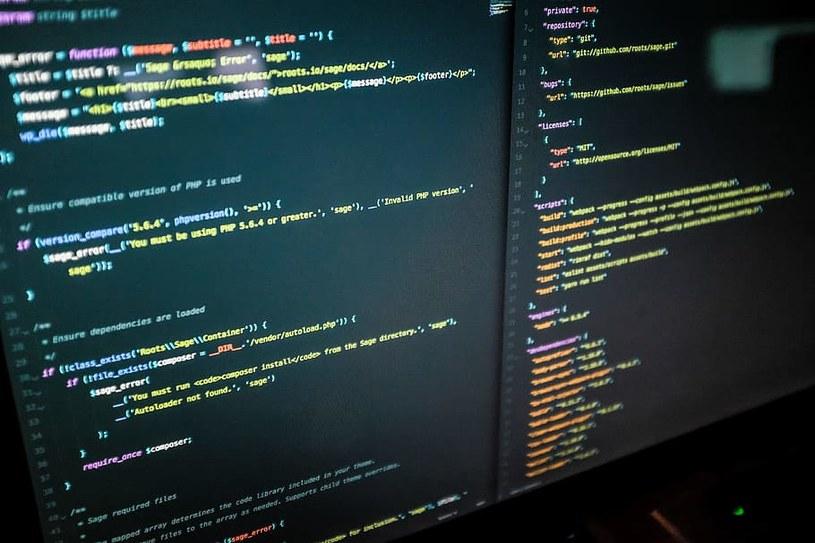 Twórca kodu internetowego www wystawia go na aukcję jako NFT /pixabay.com /materiał zewnętrzny