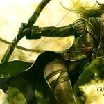Twórcy Guild Wars szykują masowe zwolnienia