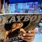 Twórcy Mafii II współpracują z Playboyem