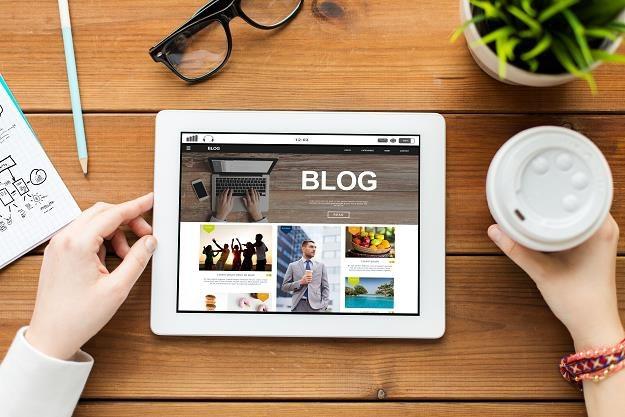 Tworzysz treści w internecie? Uważaj, żeby nie popełnić plagiatu /©123RF/PICSEL