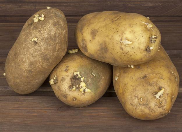 Tych właściwości ziemniaka z pewnością nie znałaś... /123RF/PICSEL