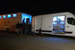 Tygrysy, które utknęły na przejściu w Koroszczynie, są już w Poznaniu