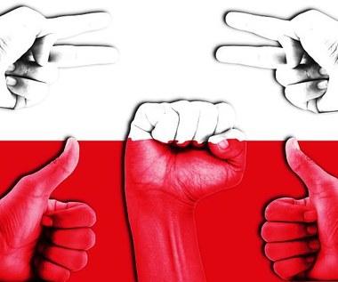 Tygrysy nie żyją nad Wisłą. Dlaczego Polska nigdy nie będzie drugą Koreą i Japonią?